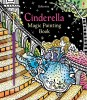 Cinderella magic painting