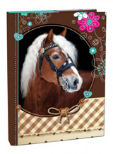 Box A5 Sweet Horse