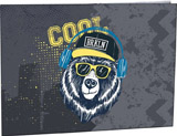Desky na èíslice Cool bear